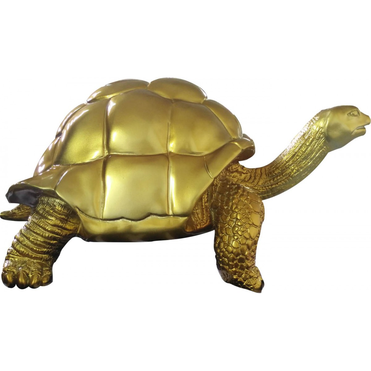 Objet tortue en decoration solutions pour la d coration for Objet de decoration