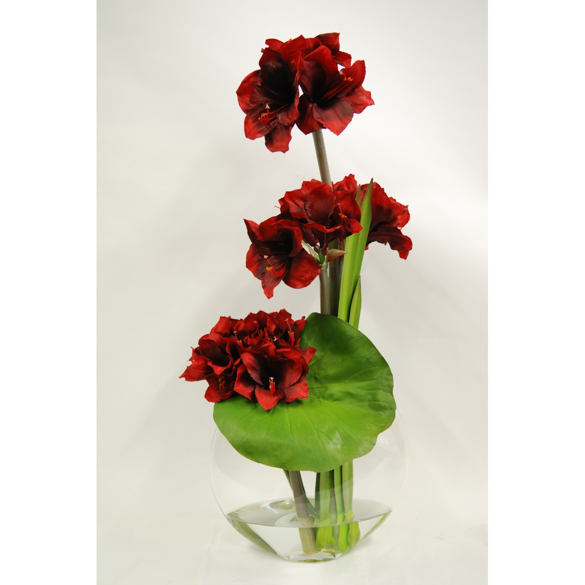 fleurs d 39 amaryllis artificiels de qualit sign es emilio robba. Black Bedroom Furniture Sets. Home Design Ideas