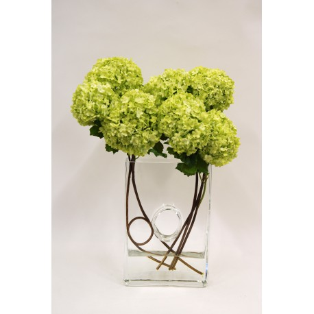 COMPOSITION ORLEANS PM VIBURNUM