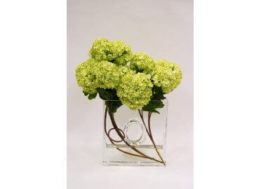 COMPOSITION ORLEANS GM VIBURNUM