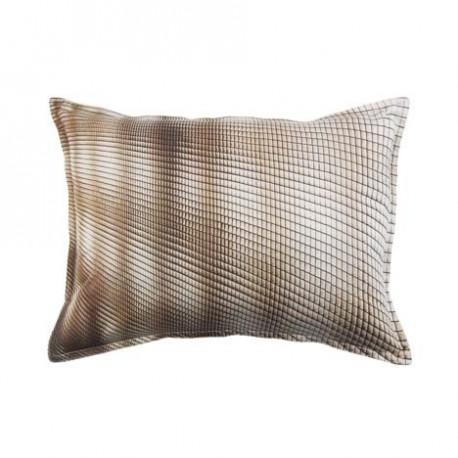 COUSSIN ABSTRACT FEUILLES D'AUTOMNE