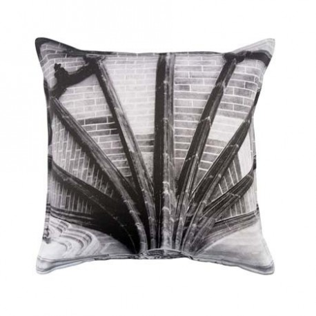 COUSSIN SPIDER MISTY FOREST