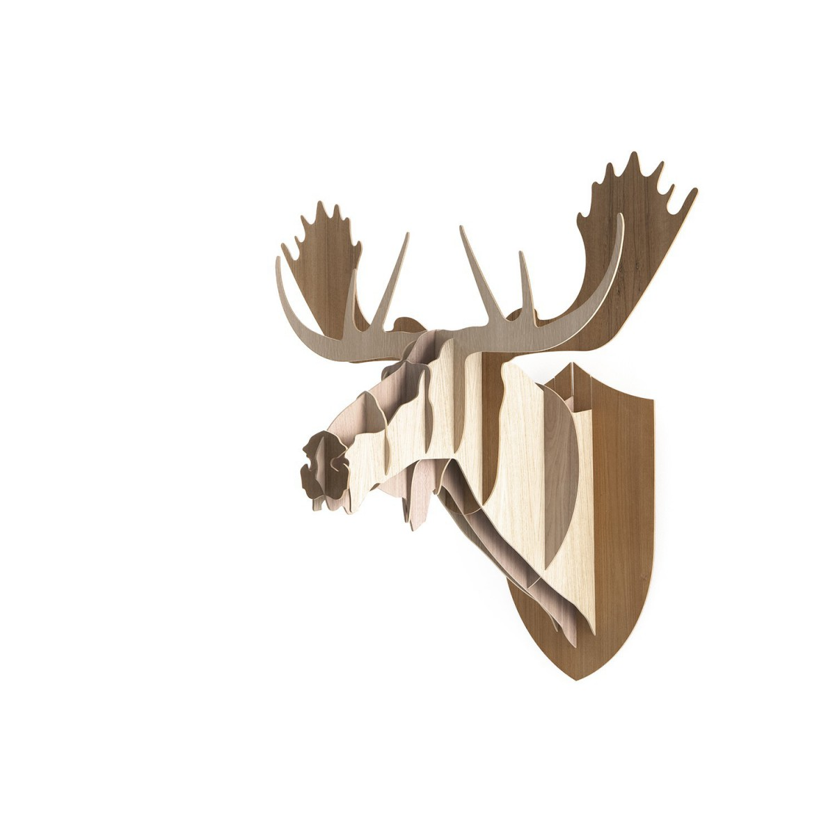 troph e d coratif moose en bois sign big game. Black Bedroom Furniture Sets. Home Design Ideas
