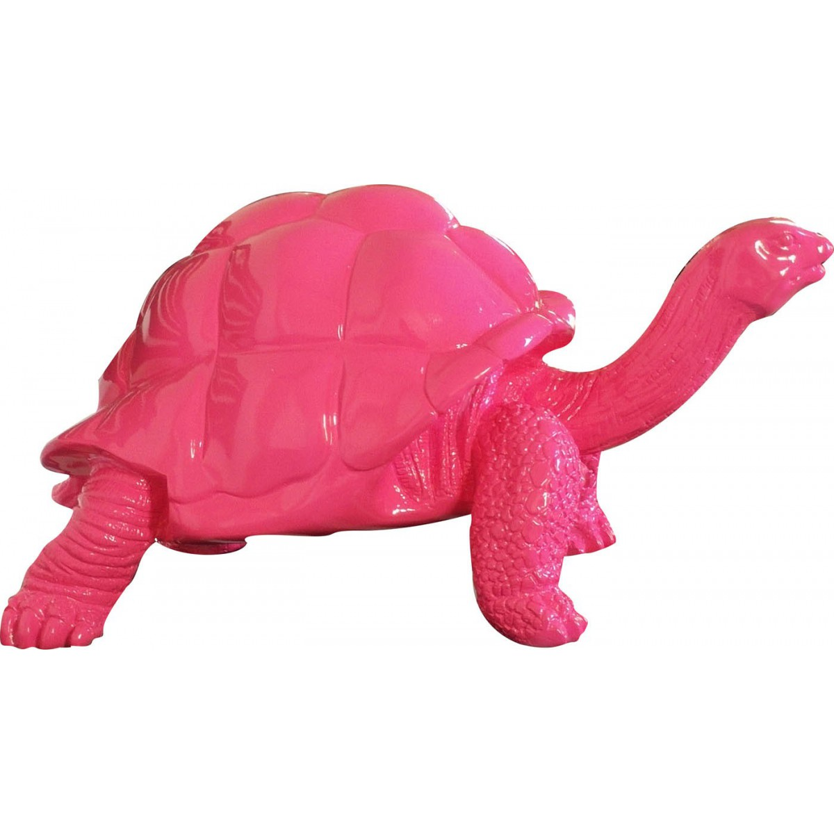 Best objet tortue en decoration pictures amazing house for Objet deco sejour