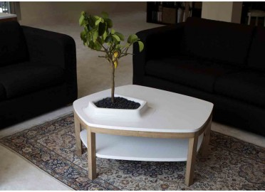 TABLE BASSE DESIGN VOLCANE PIEDS