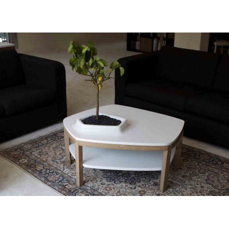 "TABLE BASSE ""VOLCANE PIEDS"""