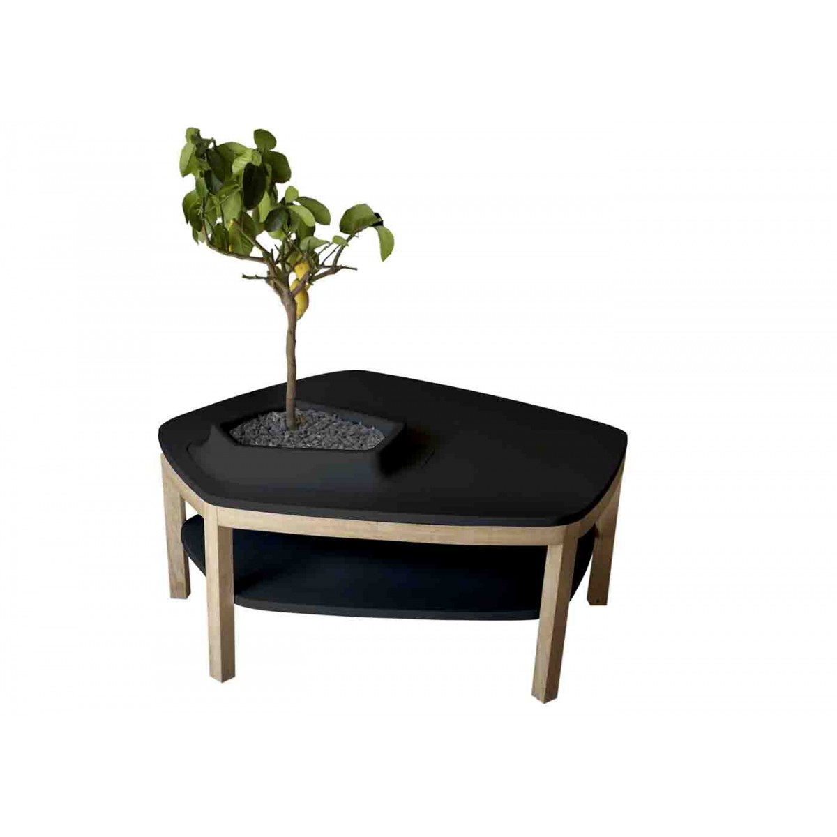 Table Basse Volcane Pied Original Design Avec Vasque