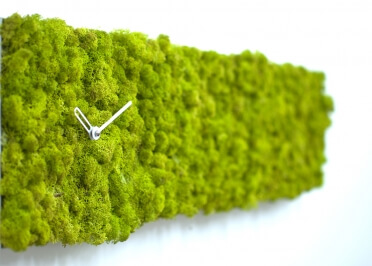HORLOGE ORIGINALE EN MOUSSE VEGETALE CLOCKE CIRCLE